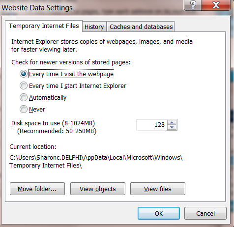 Internet Options Settings for EbixASP